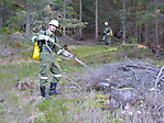 Gruppenübung Waldbrand