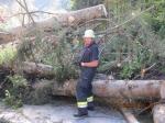 Katastrophenübung in Trieben: 03. - 04.10.2014